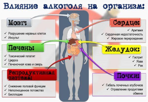 вплив алкоголя на организм